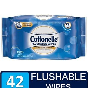 Cottonelle Alcohol-Free Flushable Wipes (42)
